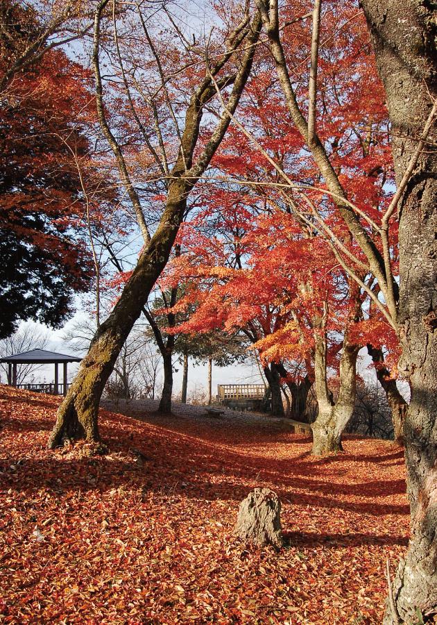 かきっ子公園